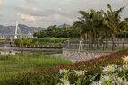 Shenzhen Bay_Lush Plantings