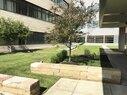 Virtua Voorhees_Rooftop Garden Lv1