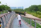 Shenzhen Bay_3dPromenade