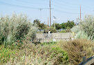 SouthLAWetlands_Youth