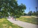 Whittier_Comm Park 1
