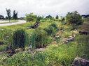 Owensboro_Grasslands