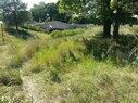 63rd Street-Grassland