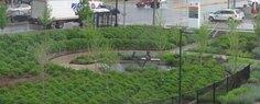 Advocate-Sculpture Garden