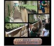 Brent Elementary-Green Roofs