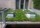 Chicago Museum-Green Roof