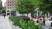 Director Park-Planter and Bosque