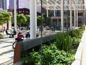 Director Park-Stormwater Planter