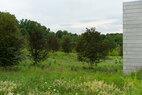 Glenstone-meadow2