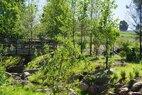 Glenstone-stream-after