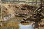 Glenstone-stream-before