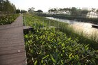 Houtan-Terraced Wetland