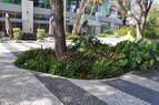 Lincoln Road-Portuguesa Paving