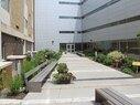 McKinley-Courtyard