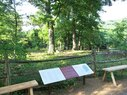 Monticello-Graveyard