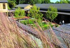 Monticello- Green Roofs