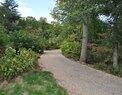 Monticello-Greensward
