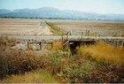 Napa-Farmland