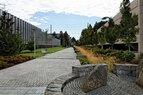 Randall-Pathway