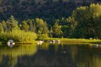 Riverside-Ponds