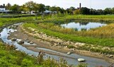 Ruth Mott-Creek and Pond