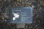 Snoqualmie-Placard