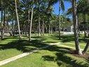 Soundsape Park_Bermudagrass