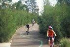 Sydney-Cyclists