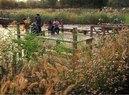 Tianjin-Deep Water Ponds