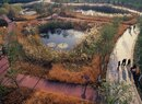 Tianjin-Ponds
