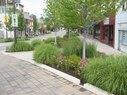 Uptown Normal-Gardens