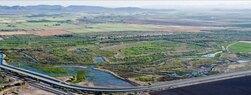 Yuma-Wetlands