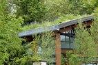 Zoomazium-Roof